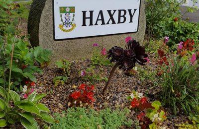 HaxbySign